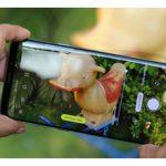 جدیدترین آپدیت ها برای گلکسی S8 ،S8 پلاس و Note 9