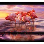 ورود سامسونگ به عرصه تلویزیون های OLED و کاهش قیمت تلویزیون